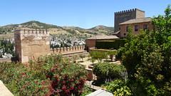Alcazaba (Fortress) (L) and Palacio Nazaries (R), La Alhambra, Granada, Andalusia, Spain (dannymfoster) Tags: spain andalusia andalucia granada alhambra laalhambra alcazaba fortress palace palaciosnazaries tree