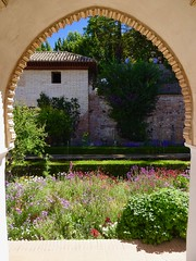 Courtyard and Fountains Through an Archway, Palacio del Generalife, La Alhambra, Granada, Andalusia, Spain (dannymfoster) Tags: spain andalusia andalucia granada alhambra laalhambra generalife palace palacio palaciodelgeneralife courtyard archway flower