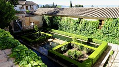Courtyard, Palacio del Generalife, La Alhambra, Granada, Andalusia, Spain (dannymfoster) Tags: spain andalusia andalucia granada alhambra laalhambra generalife palace palacio palaciodelgeneralife courtyard
