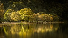 Autumn in Glendalough 9 (Kevin_Barrett_) Tags: ireland wicklow lake glendalough trees reflections autumn fall landscape scenic scenery serene yellow