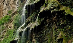 MEXICO, Yukatan , Chiapas ,  Sumidero Canyon, Steile Felsen und Wasserfälle, 1934612028 (roba66) Tags: tuxtla gutiérrez río grijalva cañón sumidero del canyon schlucht lake see mexiko mexico mécico méjico nordamerika northamerica zentralamerika yukatanhalbinsel rundreise 2017 roba66 yucatán chiapas water wasse rio fluss urlaub reisen travel explore voyages visit tourism landschaft landscape paisaje nature natur naturalezza mountains montana mountain berge range felsen rock rocks flusslandschaft riverscape river wasser waterscape waterfall wasserfall cascadas