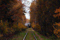 ТГМ4Б-0762 (psapros) Tags: railway train тгм4б autumn forest
