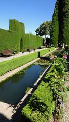 Pond, Garden of Generalife, La Alhambra, Granada, Andalusia, Spain (dannymfoster) Tags: spain andalusia andalucia granada alhambra laalhambra generalife palace palacio palaciodelgeneralife garden courtyard pond