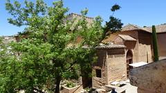 Palacios Nazaríes and Trees, La Alhambra, Granada, Andalusia, Spain (dannymfoster) Tags: spain andalusia andalucia granada alhambra laalhambra palace palaciosnazaries tree