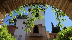Looking Through an Archway and Greenery to Palacio del Generalife, La Alhambra, Granada, Andalusia, Spain (dannymfoster) Tags: spain andalusia andalucia granada alhambra laalhambra generalife palace palacio palaciodelgeneralife archway
