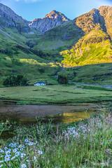 "Rising sun catches the slopes of Glencoe, by the lone cottage, near Loch Achtriochtan. (Scotland by NJC.) Tags: sunrise dawn daybreak sunup morning daylight شُروقُ الشَّمْس ""nascer do sol"" 日出 ""lever du soleil"" sonnenaufgang alba 日の出 mountains hills highlands peaks fells massif pinnacle ben munro montaña vuori montagne βουνό montagna fjell lakes lochs reservoirs waters meres tarns ponds pool lagoon lago 湖 jezero lac see λίμνη 호수 flower زَهْرَة flor 花 cvijet květina blomst bloem plant kukka fleur blume λουλούδι fiore 꽃 kwiat floare цветок blomma ดอกไม้ çiçek квітка hoa glencoe lochachtriochtan scotland"