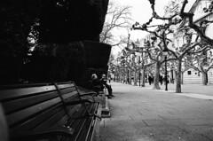 benched (stevebanfield) Tags: caminodesantiago camino nikonfm2 nikon monochrome burgos scan ilfordhp5 shotonfilmstore bw ilford spain blackandwhite film ilfordphoto