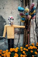 El vendedor de algodón de azúcar (hapePHOTOGRAPHIX) Tags: 484mex américadelnorte ciudaddeméxico coyoacán distritofederal event laciudaddeméxico mexico mexicocity mexiko mexikostadt méxico nordamerika northamerica ricohgriii tagdertoten tradition dayofthedeads diadelosmuertos dsplyys hapephotographix