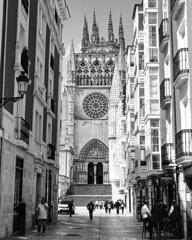 cathedral (stevebanfield) Tags: caminodesantiago camino nikonfm2 nikon monochrome burgos scan ilfordhp5 shotonfilmstore bw ilford spain blackandwhite film ilfordphoto