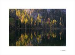 Las formas del otoño (E. Pardo) Tags: otoño herbst autumn reflejos reflections spiegelungen see lago árboles trees bäume colores colors farben formas formen forms