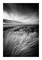 East Head / August 21st (Edd Allen) Tags: landscape clouds infrared blackandwhite bw monochrome eastsussex uk southeast england greatbritain nikond610 nikon d610 zeissdistagon18mm serene bucolic beach westwittering fence sanddunes fenceline