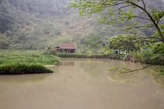 Agua turbia (rraass70) Tags: canon d700 lagos agua ninbinh deltadelriorojo vietnam