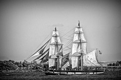 My Ship Has Sailed (Christina's World : updated bio) Tags: 1230 tallship sandiego sailboat scenic seascape seashore bay blackandwhite monochrome bright california pacific sails waterscene boats socalifornia textures oe