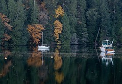 Autumn reflections in the Inlet. (Picture-Perfect Pixels) Tags: todinlet trees boats water gowllandtodprovincialpark autumn reflections