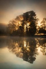 (Laetitia.p_lyon) Tags: fujifilmxt2 lyon parcdelatêtedor lac lake reflet reflection brume mist haze sunrise leverdusoleil