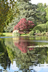 Reflections on the lake #2 (MJ Harbey) Tags: lake water reflections sheffieldparkandgardens sheffieldpark uckfield eastsussex trees nikon d3300 nikond3300 nationaltrust