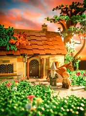 Remember to water the flowers I planted for you, Gandalf. (Lego_nuts) Tags: lordofthering thehobbit lotr moc legomoc legophotography lego