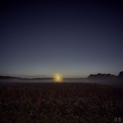 Moonest, Whately (3065) 3 ((8_8)) Tags: landscape landscapephotography morning moon moonset field newengland autumninnewengland color colorful