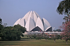 Lotus Temple (Jungle Jack Movements (ferroequinologist) all righ) Tags: lotus temple sydney opera house bahai delhi new india indian church ecclesiastical cleric clerical minister priest religion religious priestly apostolic secular spiritual pray worship preach preacher hindu muslim christian buddhism sails architecture beautiful building style passion