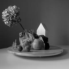Still life (md-lichtbild.de) Tags: still life flower bw autumn fruit fuji xe2