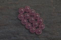 Bug's Pink eggs (mcvmjr1971) Tags: blue nikon d800e lens sigma 150mm f28 macro mmoraes quintal casa home backyard pendotiba niterói brasil 2019 outubro