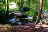 Shipley Glen Walk