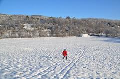 skisesongen har startet (KvikneFoto) Tags: tamron nikon snø snow landskap