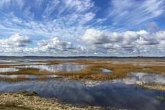 high tide at Hellcat (material guy) Tags: massaudubon plumisland parkerrivernwr newburyport massachusetts hellcatdike water clouds marsh reflection saltmarsh