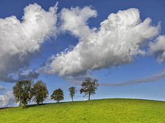 Clouds n trees (Alan10eden) Tags: trees clouds sky autumn ireland border armagh monaghan alanhopps canon 5dmkiv 24105mm ulster landscape colours fluffy bluesky
