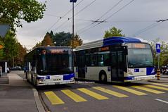 Autobus MAN Lion's City n°311 en service sur la ligne 13 et l'Autobus NEWA330 en service sur la ligne 12. © Marc Germann (Marc Germann) Tags: trolleybus naw bt25 tl lausanne ligne9 retrobus vanhool newa330 mercedescitarobenz transportspublics remorques historique historic fbw bus par brise convois