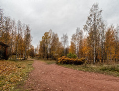 Vyborg. Autumn (Svetla (ribonka 78)) Tags: nature autumn vyborg