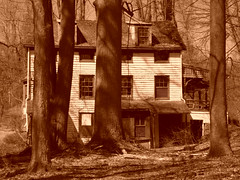Abandoned 2 (alanzmarmur) Tags: abandoned trees spooky scary sepia