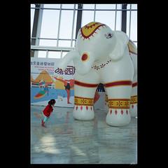 _DSC6937 (leeyu_flickr) Tags: 故宮南院 生活 museum 貓仔 晨希 希希 girl 泰國展
