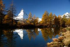 Grindjisee / Matterhorn Switzerland (JohannesMayr) Tags: matterhorn grindjisee switzerland schweiz zermatt see lake blue herbst lärchen gold autum tree bäume wasser schnee snow sky himmel blau larches spiegelung reflexions mountain alps alpen wallis valais