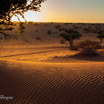 Sunset at Kalahari Desert