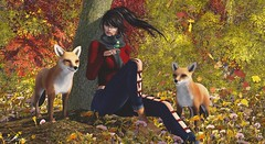 A beautiful autumn (sibyl gothly666) Tags: argrace jzulus nuno justice vale koer secretposes kokoroposes ebento