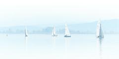 RM-2019-365-300 (markus.rohrbach) Tags: objekt fahrzeug boot segelboot natur landschaft wasser gewässer see bielersee thema fotografie highkey projekt365