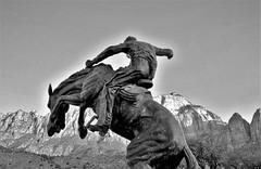 YEEE HAAA! (Rob Patzke) Tags: horse sculpture bw monochrome panasonic lx100 lumix cowboy mountain ride hills art action
