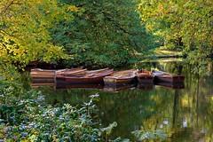 Days in October | Boats (picsessionphotoarts) Tags: nikon nikonphotography nikonfotografie nikond850 urbanromantix downtown innenstadt bremen hansestadt hansestadtbremen norddeutschland goldeneroktober goldenoctober bürgerparkbremen bürgerpark herbst autumn boote boats afsnikkor80400mmf4556gedvr