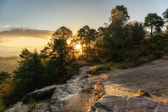 Alderley Edge Sunrise (Rob Pitt) Tags: alderley edge sunrise cheshire sony a7rii trees autumn sandstone