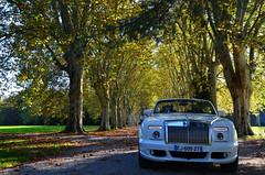"""""""Je me suis réveillé un matin pour réaliser que j'étais devenu célèbre. J'ai acheté une Rolls-Royce blanche, me suis mis à conduire sur Sunset Boulevard, en lunettes noires et costume blanc, agitant la main à la manière de la Reine-Mère."""" (Peter O'Toole) (Philippe Haumesser (+ 8000 000 view)) Tags: voiture auto car rolls paysage paysages landscape landscapes arbre arbres tree trees allée alley schoppenwihr personnes peoples alsace elsass france hautrhin 68 nikond7000 nikon d7000 reflex 2019 llva automne autumn nature"""