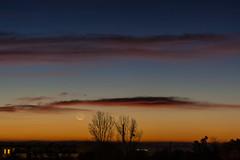 small crescent moon vs. Mars / @ 75 mm / 2019-10-27 (astrofreak81) Tags: explore mars mond luna clouds wolken moon planet stars tree light night sky dark konjunktion konstellation dresden 20191027 astrofreak81 sylviomüller sylvio müller