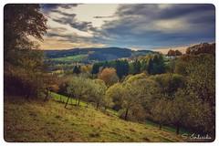 Autumn Colors (Stathis Iordanidis) Tags: autumn trees flora grass grassland hills colors kronenburg eifel countryside afternoon walk