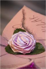 Paper rose. (Vicent Ramiro) Tags: macromondays fake rosa rose papel paper macro canon 70d sigma105 photo foto garden jardin flowers flores