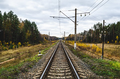 Railroad surrounded by autumn forest. (ivan_volchek) Tags: afternoon autumn background beautiful bend bright brown color colorful concept conceptual conceptualimage curve fall forest golden green iron landscape leaf nature old orange outdoors pathway perspective rail railroad railway railwayline rural scenery scenic season sleeper steel sunny tracks train transit transport transportation travel tree wilderness wood yellow yellowleaves