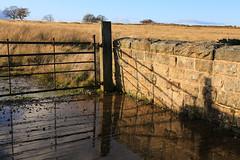 Shadow Reflecting (zeity121) Tags: redmires redmiresreservoir sheffield yorkshire peak peakdistrict gate wall reflection reflectioninwater shadow