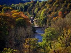 Autumn from the Aqueduct (seantindale) Tags: autumn colours aqueduct wales uk river bridge olympus omdem1markii europe srbphotographic polariser fall trees