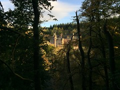 Photo of Castle in the woods