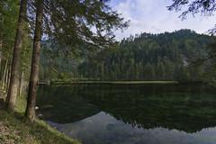 Hinterstoder, Upper Austria (lebre.jaime) Tags: austria upperaustria hinterstoder landscape nature reflection river trees digital fullframe ff fx nikon d600 nikkorafs1735f28d affinity affinityphoto