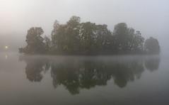 (Laetitia.p_lyon) Tags: fujifilmxt2 lyon parcdelatêtedor lac lake automne autumn fall brume mist haze